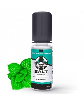 Ice Mint 10ml [Salt E-Vapor]